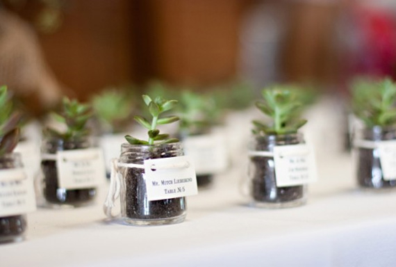 Wedding Favours Squirrelly Minds
