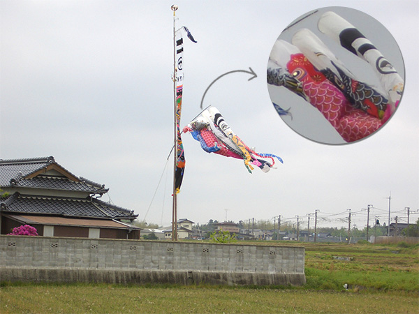 DIY Koinobori - Japanese Flying Carp