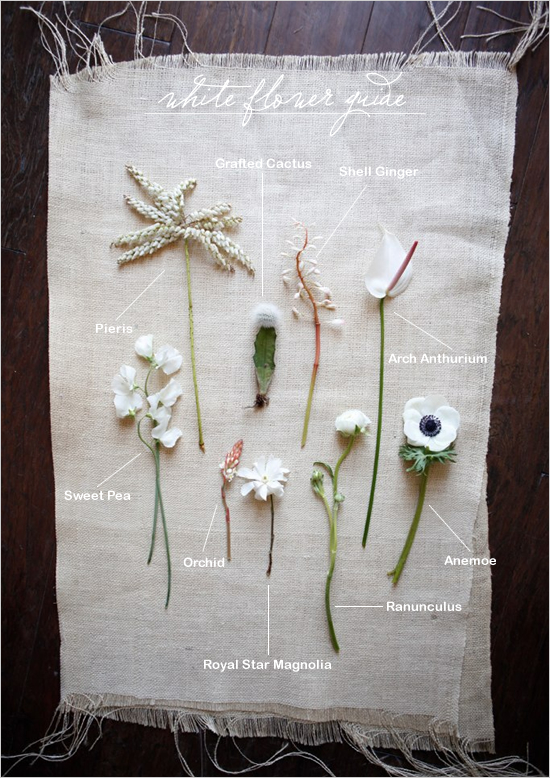 Flower Guide by Wedding Chicks on Squirrelly Minds