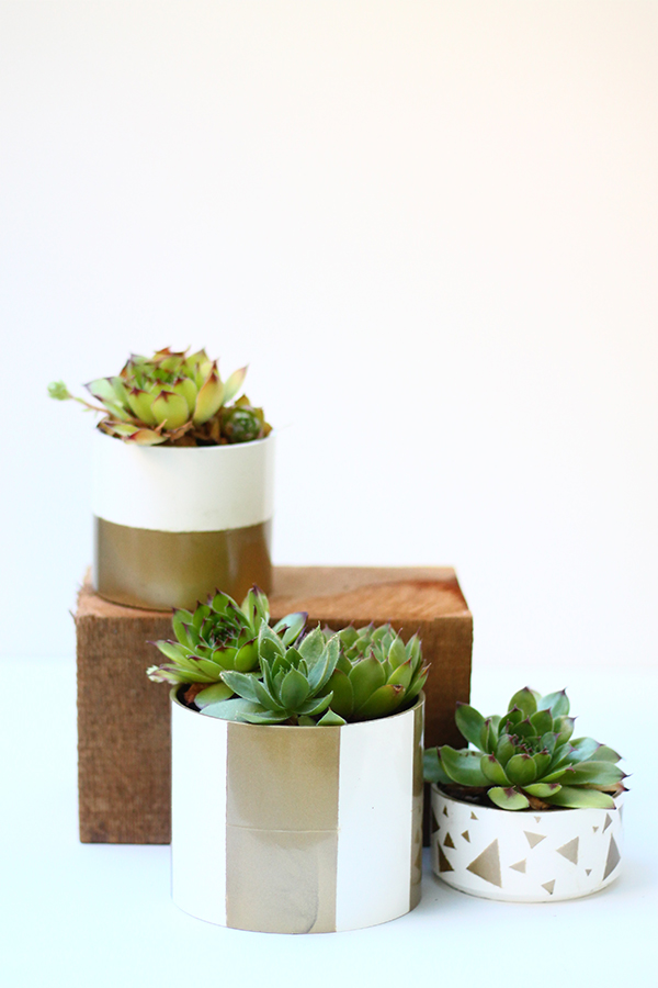 PVC Pipe Planter DIY on Squirrelly Minds