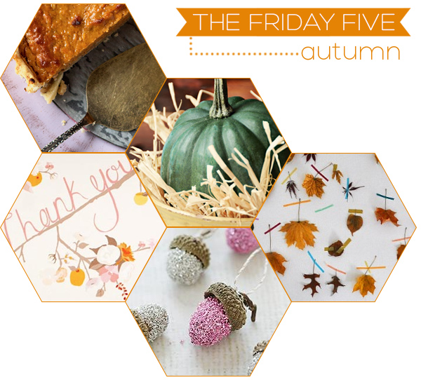 The Friday Five - Autumn | Squirrelly Minds