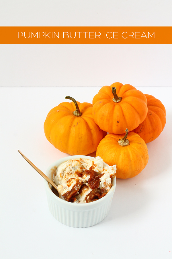 Easy Pumpkin Butter Ice Cream | Squirrelly Minds