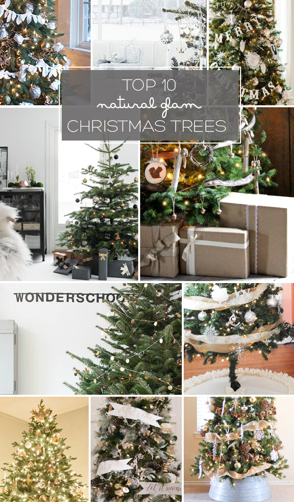 Top 10 Natural Glam Christmas Trees | Squirrelly Minds