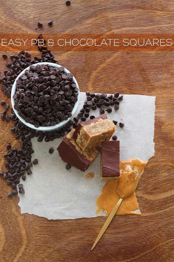 Easy PB & Chocolate Squares | Squirrelly Minds