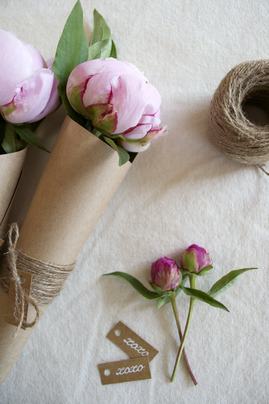 Top 7 Peony DIY's - Photo by Hey Art Social | Squirrelly Minds