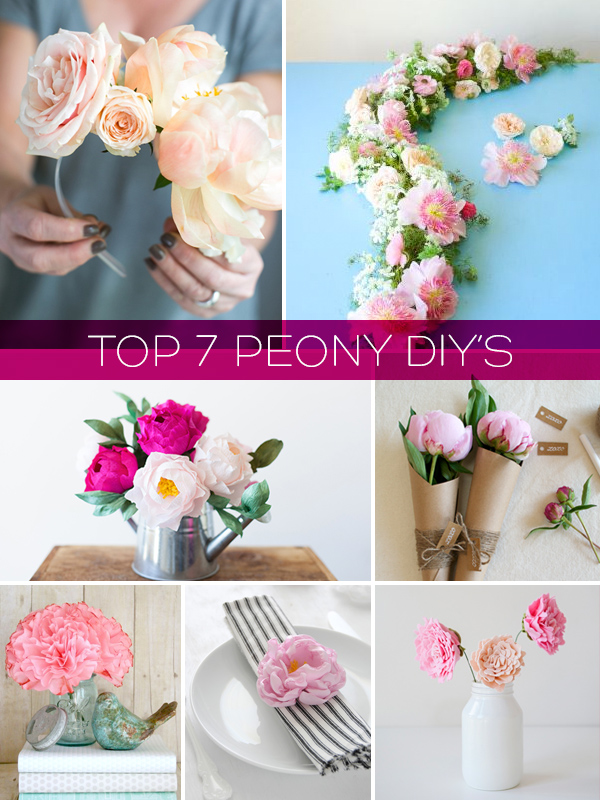 Top 7 Peony DIY's | Squirrelly Minds