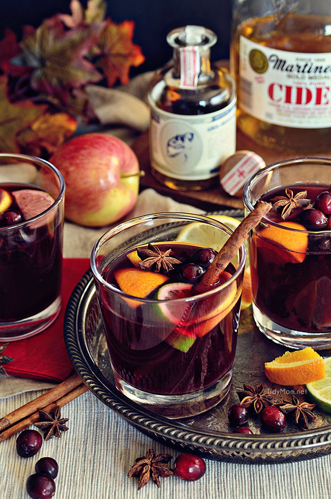 Mulled Wine Recipes - Photo by Tidy Mom | Squirrelly Minds