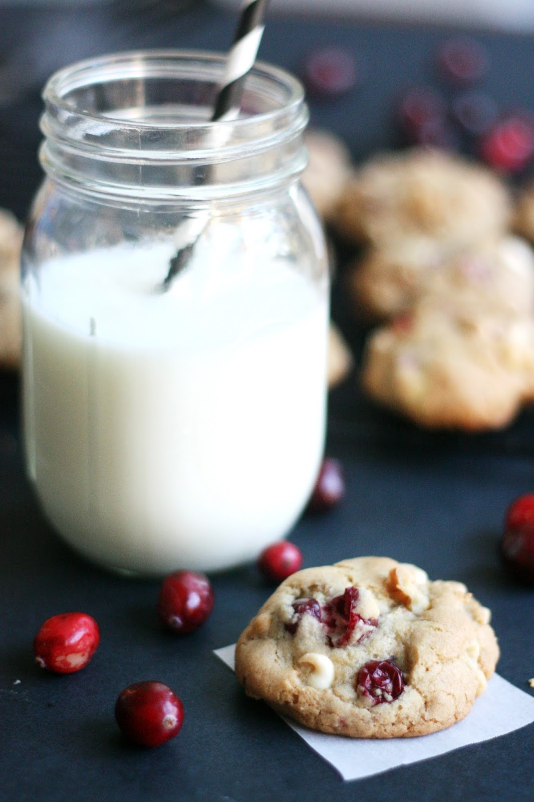Top 5 Christmas Cookie Recipes - Photo by The Pretty Life Girls | Squirrelly Minds